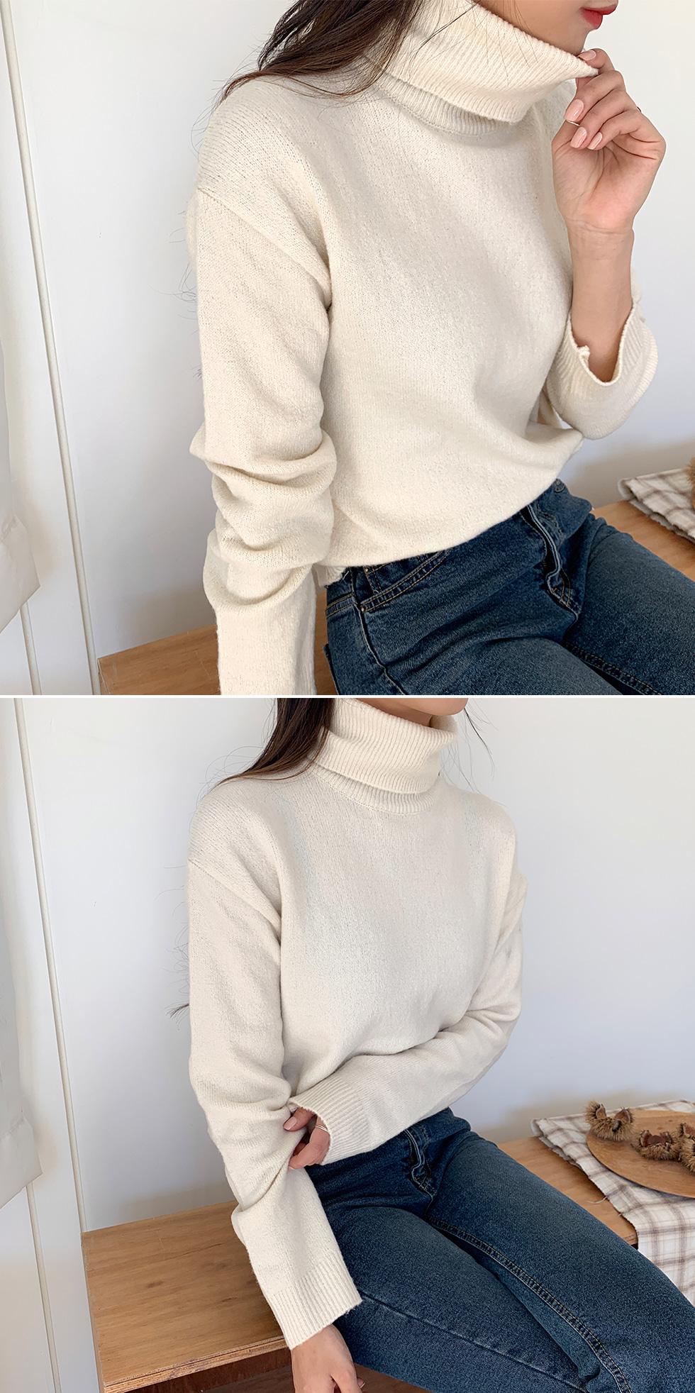 Ash Turtleneck Knitwear