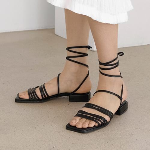 Avid gladiator sandals