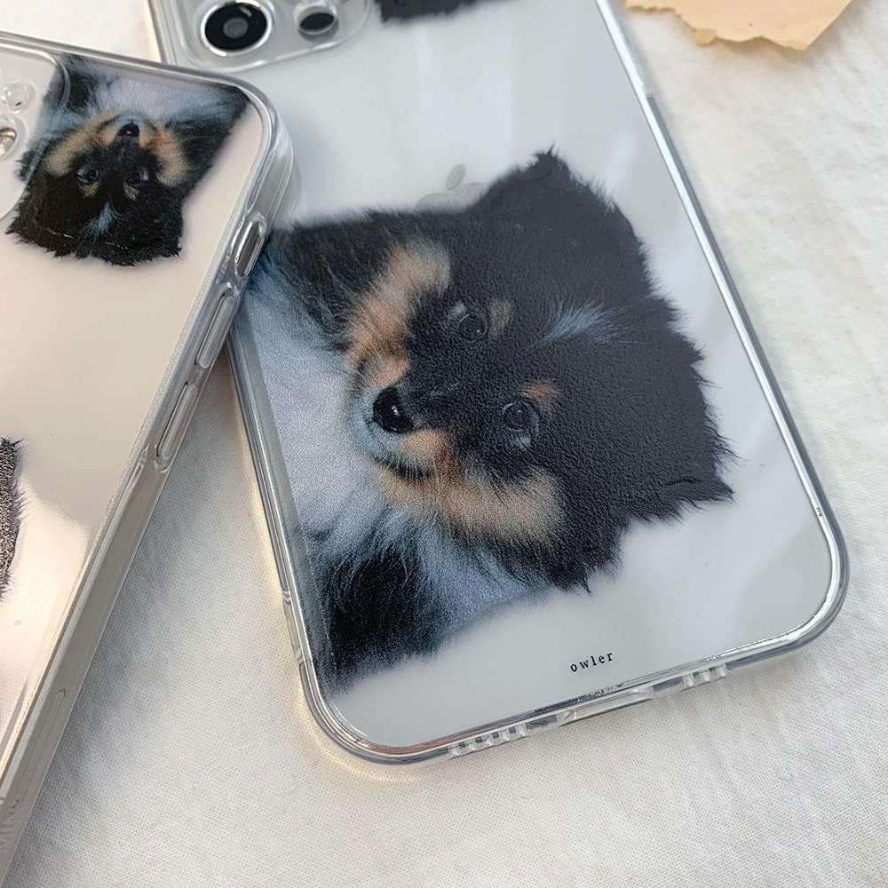 Black Pomegranate Dog Transparent Jelly iPhone Case