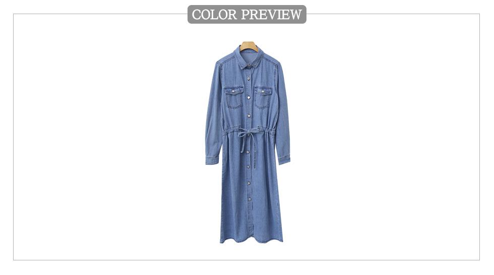 Fortende's Dress