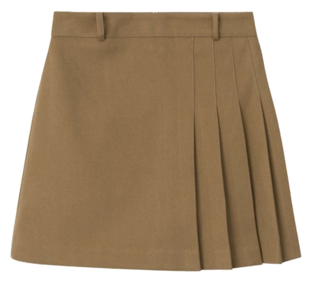 Pleats Skirt Pants