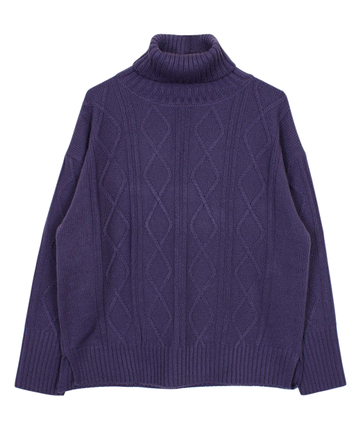Cable turtle-neck knit (3color)