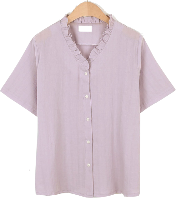 Neck Point Short Sleeve Blouse