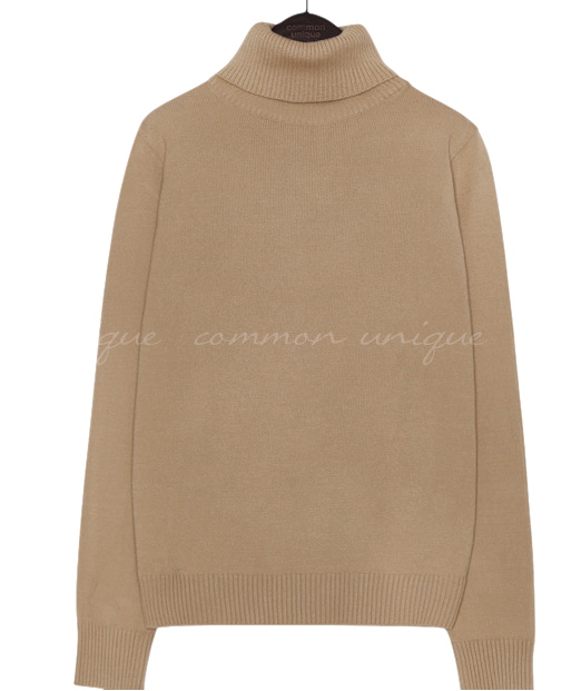 6 COLOR BASIC TURTLE NECK KNIT