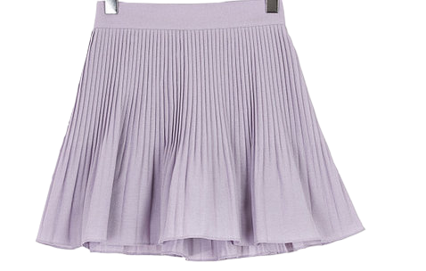 Accordion pleated pants skirt