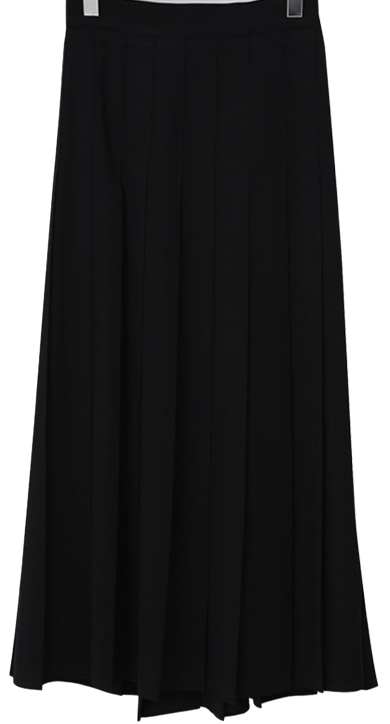 Vivier pleats long skirt