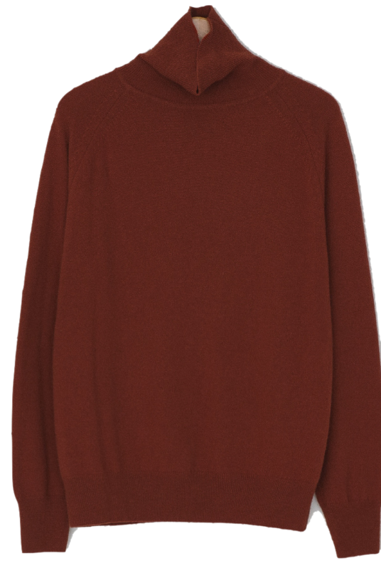 Soft Cashmere Turtleneck Knit