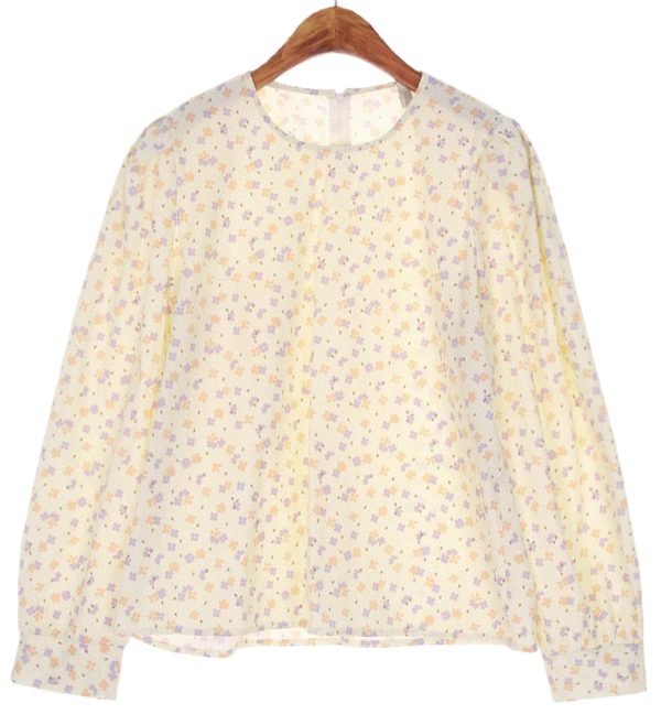 Spring puff blouse