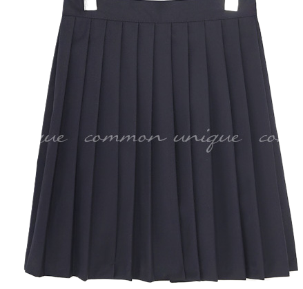 SOEN SET-UP PLEATS MINI SKIRT