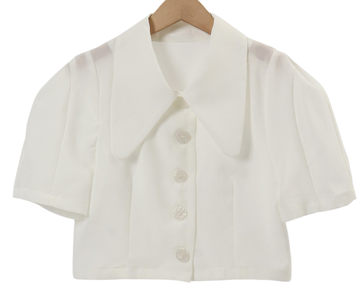Big Cara Puff Short Sleeve Jacket