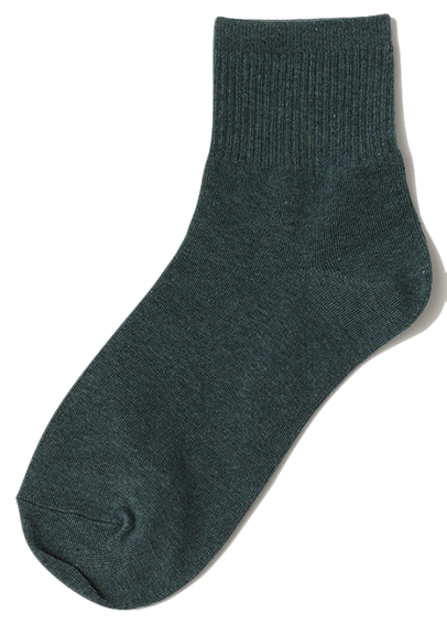 Golgi simple color socks_C 襪子