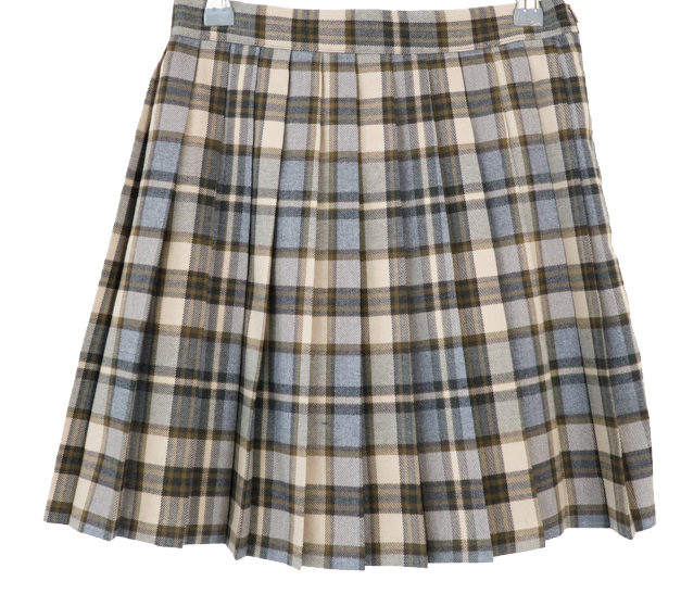 Croa pleated mini skirt