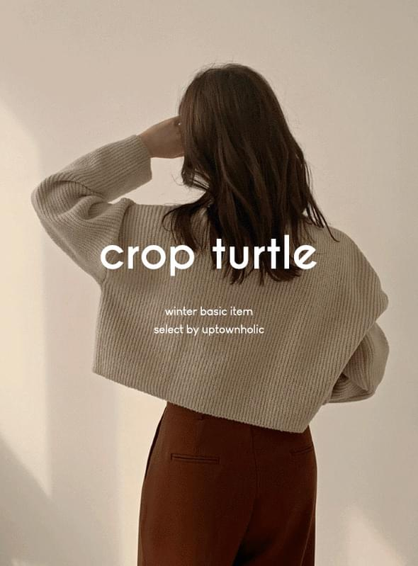 Turbine crop turtle knit