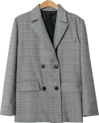 Ray Check Jacket