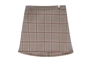 Trudy check skirt