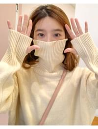 Present turtle-neck knit_J (울 80%) (size : free)