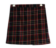 Merry check skirt