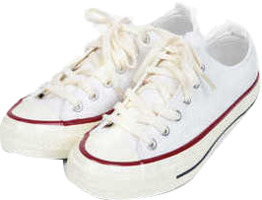taylor canvas sneakers (225-250)
