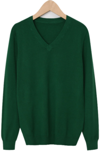 Even wool v-neck knit_Y (size : free) 針織衫
