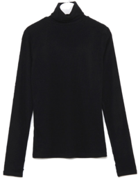 color warmer turtleneck T