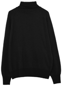 merino wool raglan turtleneck knit - woman