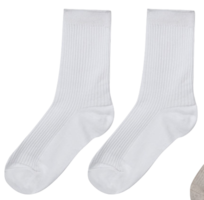 ESSAYBasic Ribbed Panel Socks