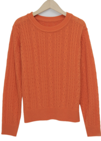 Only slim cable knit_C