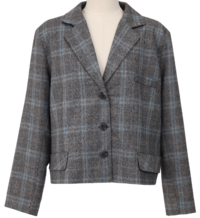 Colin Check Cropped Jacket