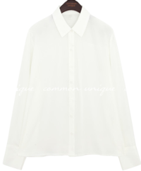 Basic Point Collar Button-Up Blouse