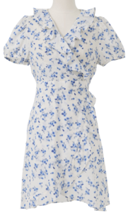 Flower Shirring Lab Mini Dress