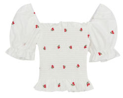 Embroidered cropped blouse