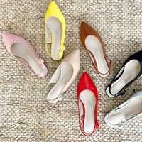 Pointed Nose Strap Flat Shoes S#YW308