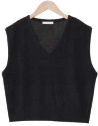 Have Simple Knitwear Vest
