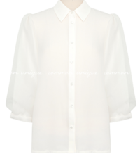 Sheer Layered Sleeve Button-Up Blouse