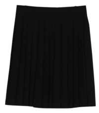 Canon pleated skirt