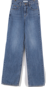 Want Wide Denim Pants