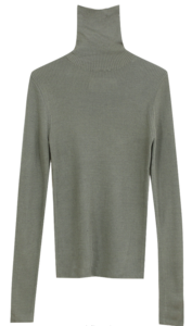 Golgi Wool Turtleneck Knit