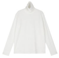 Treat warmer turtleneck top