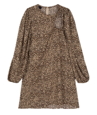Hall leopard mini dress