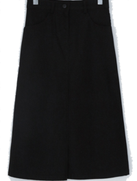 Ryan Semi A-line skirt