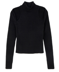 Herb Split Turtleneck Knit