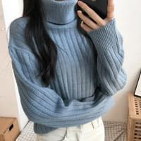 Basic Neck Polar Knit