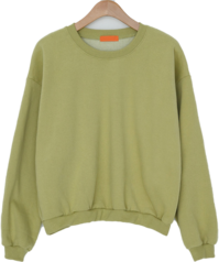Deer Yang Brushed Semi-Crop Sweatshirt