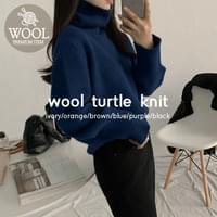 Tani Wool Turtle Knit