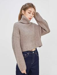 Sovea Crop Turtleneck Knitwear