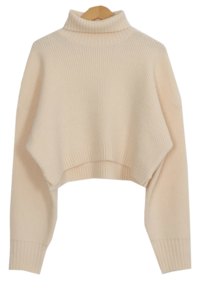 Snon Turtle Semi-Crop Knit