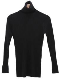 Mono Ribbed Turtleneck Knitwear