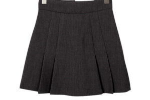 Eden pleated mini skirt