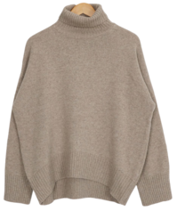 Thes Wool Turtle Knit