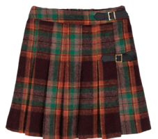 Teen Check Pleated Mini Skirt